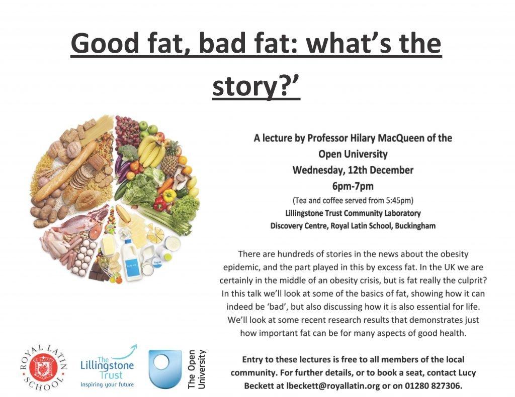 Good Fat bad fat - Poster (004)